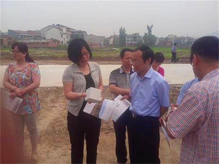 汉阴县人民政府主要陪同市发改委莅临我公司调研项目建设